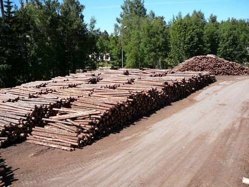 We are purchasing logs